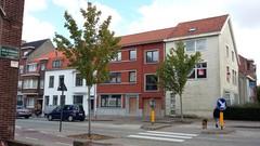 Brugge Leopold I-laan vredesbomen als laanaanplanting (https://id.erfgoed.net/afbeeldingen/277555)