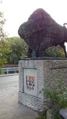 Brugge Leopold I-laan vredesbomen als laanaanplanting (https://id.erfgoed.net/afbeeldingen/277556)