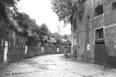 Fort VII