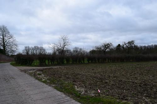 Borgloon Kerniel Colenstraat Hoogstamboomgaard (1)