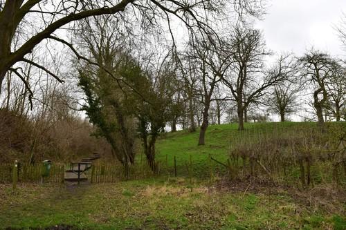 Tongeren Overrepen Hoogstamboomgaard bij Herkenhoeve (2)