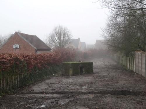 Brecht Dijkstraat znr