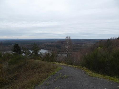 Mijnsite Eisden, Mechelse Heide en Mechels Bos