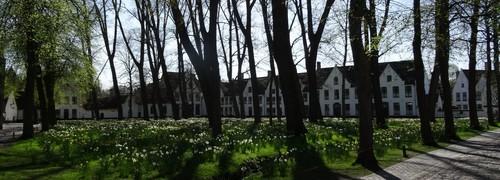Brugge Begijnhof 1-17, 2-54, Professor Dr. J. Sebrechtsstraat 2-4 west