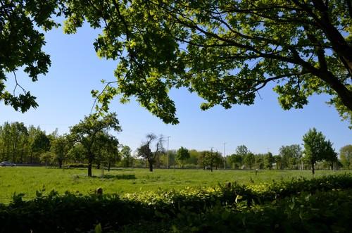 Alken Hemelsveldstraat St Joriskapel boomgaard