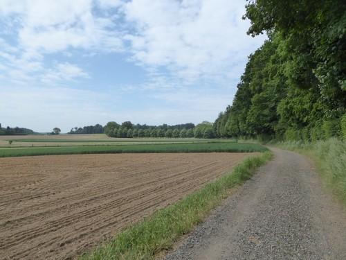 Gaasbeek, Sint-Laureins-Berchem, Oudenaken en Elingen (5)