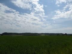 Gaasbeek, Sint-Laureins-Berchem, Oudenaken en Elingen (11) (https://id.erfgoed.net/afbeeldingen/283444)