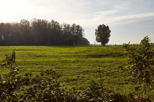 Eerste Wereldoorlog-slagveld van Bellewaarde Ridge