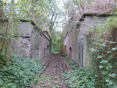 Fort van Zwijndrecht