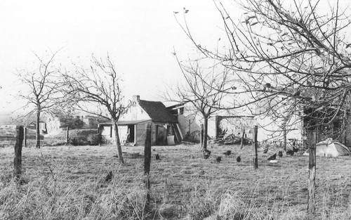 Steenokkerzeel Houtemsesteenweg 4