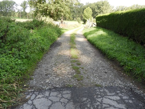 Ninove Denderwindeke Losweg Kwaadbroeken (3)