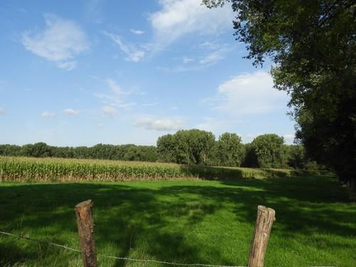 Ninove Denderwindeke Steilrand Dender (1)
