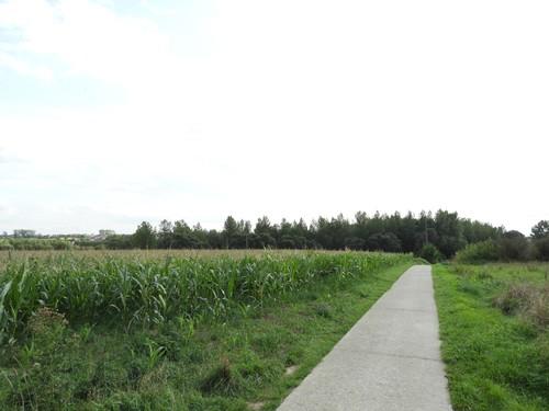 Ninove Outer Oude Eichembaan (2)