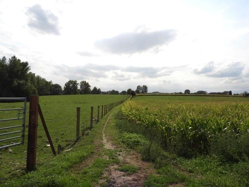 Ninove Outer Oude Eichembaan (1)