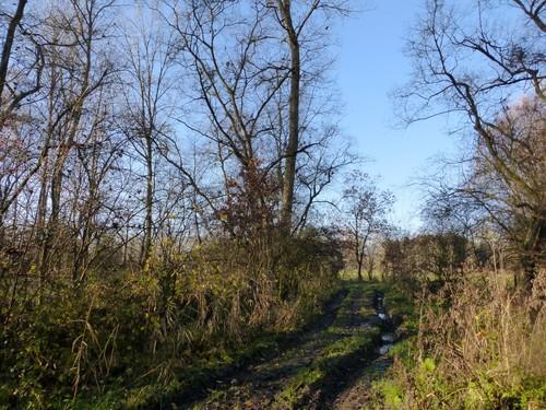 Denderwindeke Losweg (2)