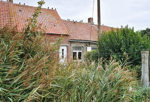 Zuienkerke, Nieuwmunster, Brugse Steenweg 20