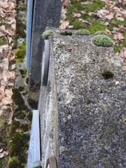 Dilbeek Don-Bosco St-Wiviniadreef Begraafplaats (19) (https://id.erfgoed.net/afbeeldingen/306607)