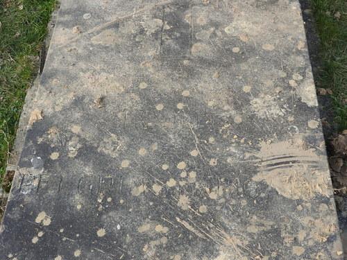 Dilbeek Bosstraat Begraafplaats (13)