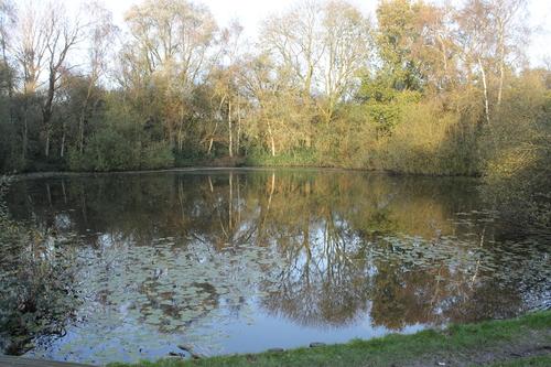 Wijtschate Kruisstraat znr Pool of Peace 2014111101
