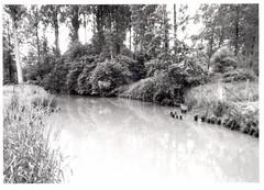 Watermolen Celismolen (https://id.erfgoed.net/afbeeldingen/321844)