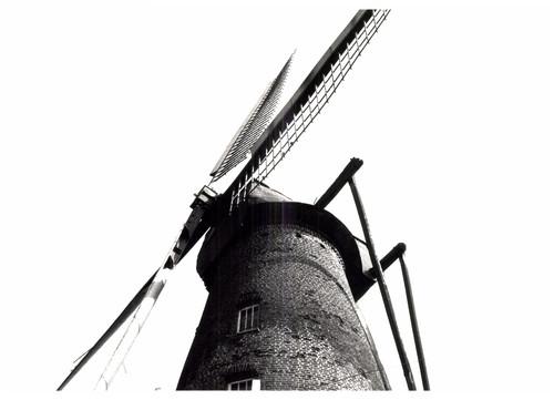 Windmolen Muizelmolen