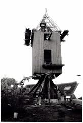 Windmolen Nieuwe Bossenaarmolen of Tukmolen (https://id.erfgoed.net/afbeeldingen/324394)