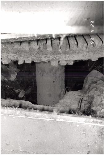 Kasteel van Dormaal en watermolen