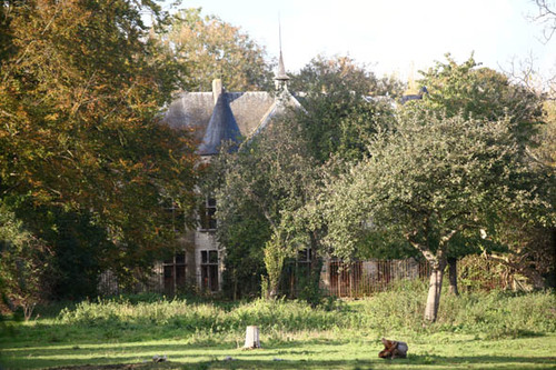 Steenokkerzeel Sellaerstraat 42