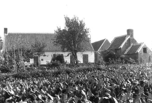 Zulte Ponteputstraat 14