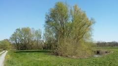 Afgesneden meanders langs de Demer tussen Aarschot en Diest