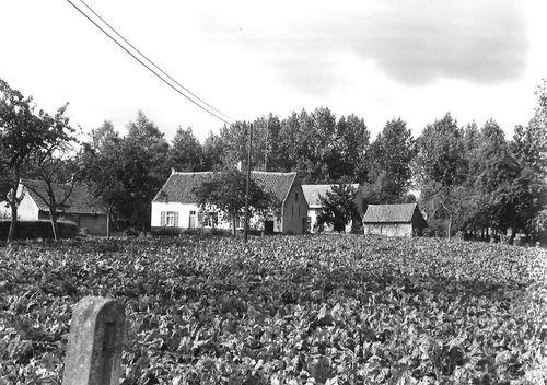 Sint-Niklaas Galgstraat 17