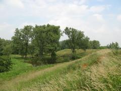 Historische dijken van de polder Kruibeke-Bazel-Rupelmonde