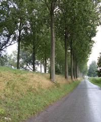 Historische dijken in de polders van Moerzeke-Kastel