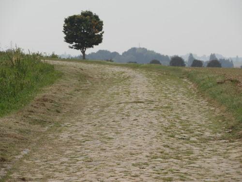 Kasseiweg Negenbunderweg met aantakkingen