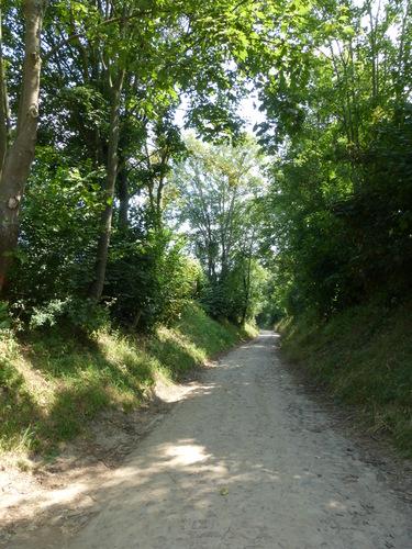 Kasseiweg Walestraat