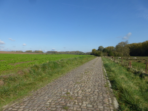 Kasseiweg Molenstraat