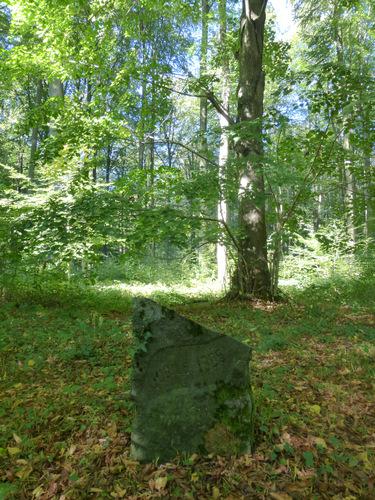 Opgaande lindes als herdenkingsbomen 75 jaar België
