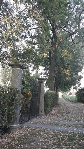 Kerkwegel Kanegem