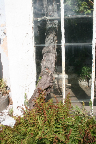 Herenhuis Beaucarne met tuin en druivenserre
