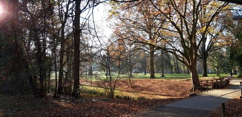 Arenbergpark