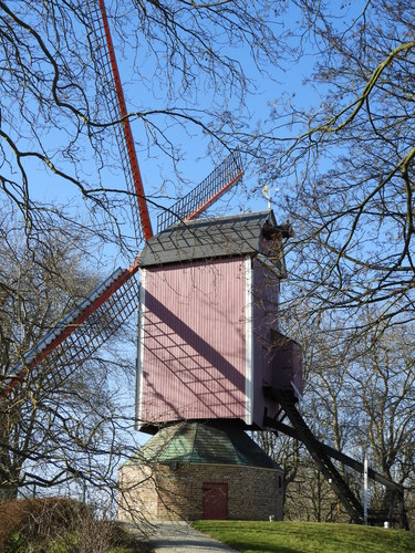 Windmolen De Nieuwe Papegaai