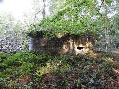 Bunker Be20