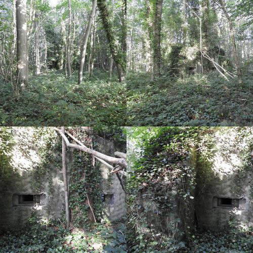 Bunker Be19