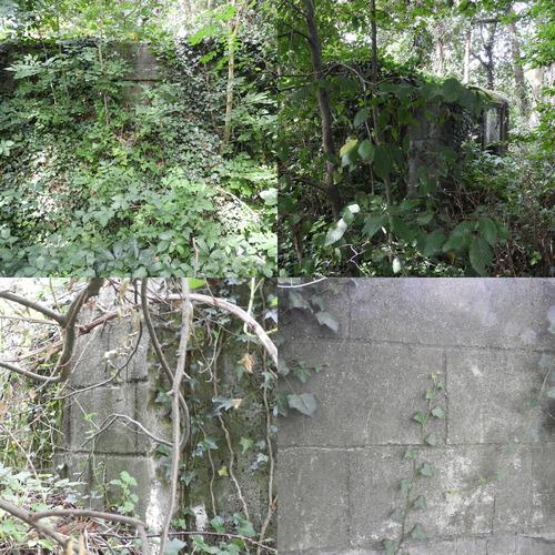 Bunker A38